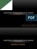 Anestesias Tronculares en El Equino