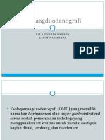 Esofagomaagduodenografi