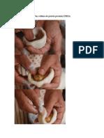 ALOO PARATHA (Pan Relleno de Patata Picante) INDIA
