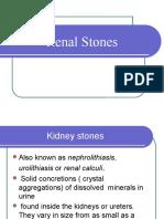 Urinary Stones 1