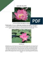 AQUATIC PLANTS.docx