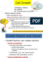 Cancer & Cell Growth