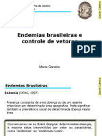 Aula 7 - Endemias brasileiras e controle de vetores.pdf