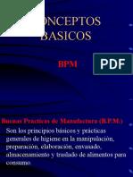 Capacitación Conceptos Basicos BPM 2009