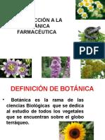 Botanica Clase 1