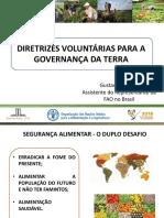 II CNPFA - Apresentação Gustavo Chianca - Diretrizes Voluntárias FAO