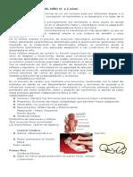 Desarrollo Motor Del Niño ( 0 a 2 Años)