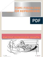 anatomifisiologisistemreproduksi-120112003922-phpapp02