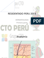 Clase de Dermatología - Residentado 2013
