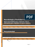 Neuroplasticidad (1).pdf