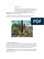 Ecosistema Altas Cumbre
