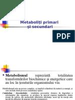 Metaboliţi Primari Şi Secundari
