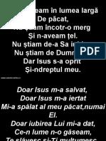 Rataceam in Lumea Larga de Pacat - Doar Isus M-A Salvat Doar Isus M-A Iertat