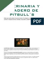 Pitbull, Veterinaria y Accesorios