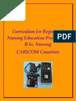 12064-Curriculum for Registered Nursing Education Programme