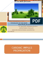 Heart Physiol, Electrical Activity