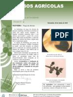 Circular 5 10 - Agricultura - Trás Os Montes e Alto Douro
