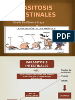 Parasitosis Intestinales Original Giselle