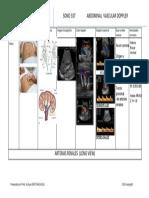 doppler espectral long normal renal contestado