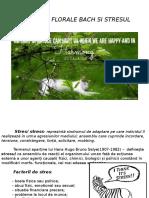 REMEDIILE-FLORALE-BACH-SI-STRESUL1.pps