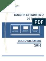 Boletin Anual de Turismo 2014