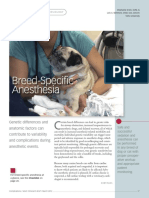 Breed Specific Anesthesia
