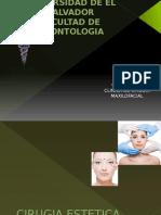 Cirugia Estetica Facial Cuarta Rotacion