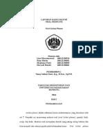 Laporan Kasus Mayor - ROSY 160112130052