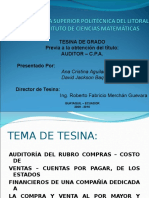 Diaspositivas de Presentación de Tesina de Auditoria Financiera para Auditor - CPA.ppt