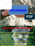 Hongos Agro