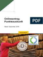 Punktestand Online Beantragen Faltblatt PDF