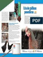 script-tmp-inta_-_cra_de_gallinas_1.pdf