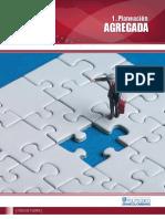 1 Planeacion Agregada.pdf