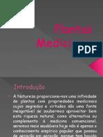docslide.com.br_plantas-medicinais-5593896eb8a8b.pptx