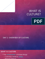 what is culture-