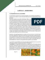 Repsol 2004 Cap v Reservorios II (1)