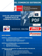 Guia de Capacidades Gerenciales CE.ppt