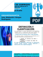 ORQUIEPIDIDIMITIS 97