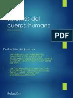 sistemas del cuerpo humano  1