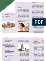 Leaflet Cedera Spinalis