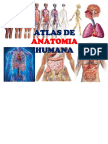Atlasdeanatomiahumana Edwinambulodegui 130906205135 [6]
