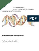 Ácidos nucleicos