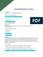 Actividad 4 Quiz.docx