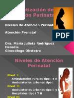 Atención Perinatal()
