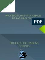 Procesos Constitucionales Perú