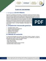 TEMARIO Analisis de Cascarones