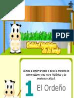 PRUEBAS DE PLATAFORMA DE LA LECHE
