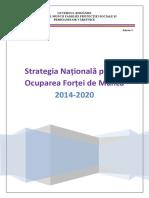 Strategia Națională pentru Ocuparea Forței de Muncă 2014 - 2020.pdf