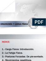 ErgonomíayCargaFísica