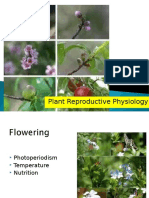 Flowering Physiology